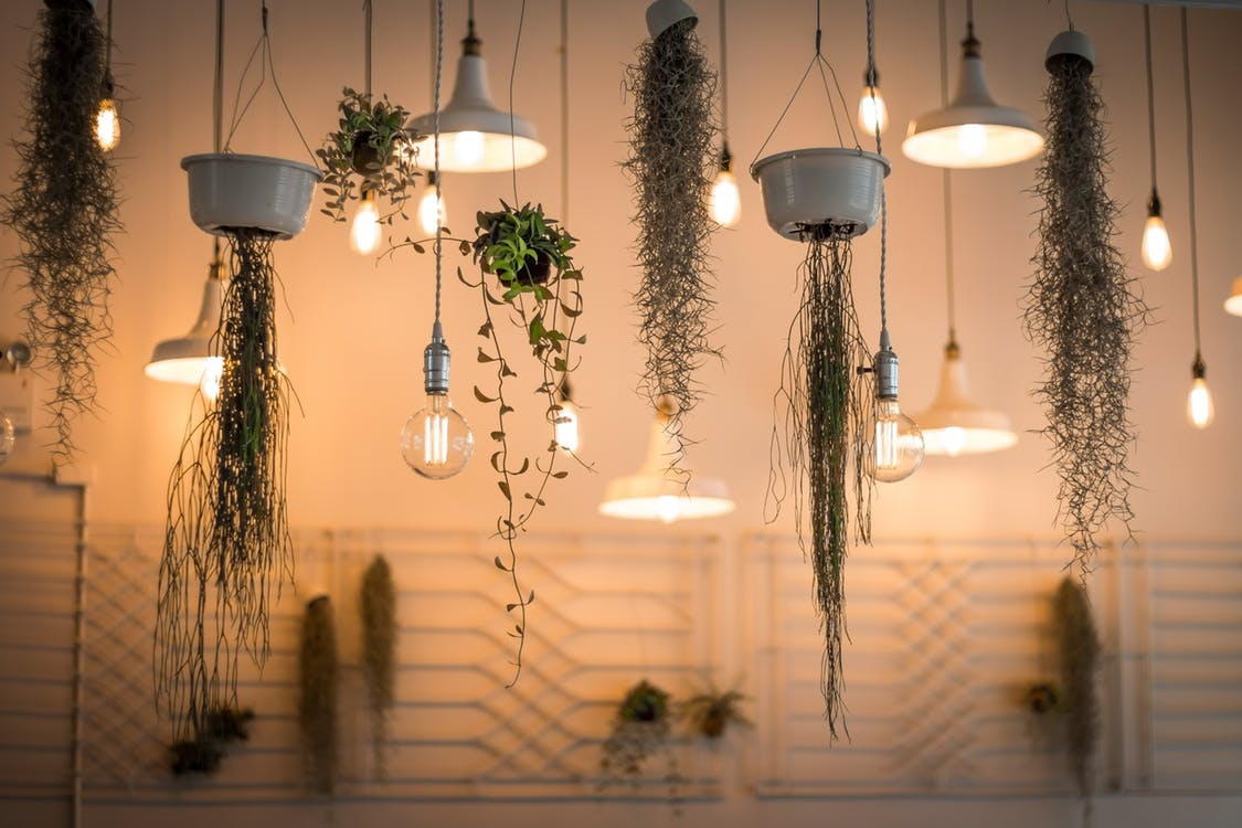 wiele lamp wiszących nowoczesnych